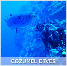 wall dive in Cozumel